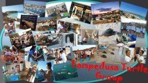 Tartarughe Lampedusa