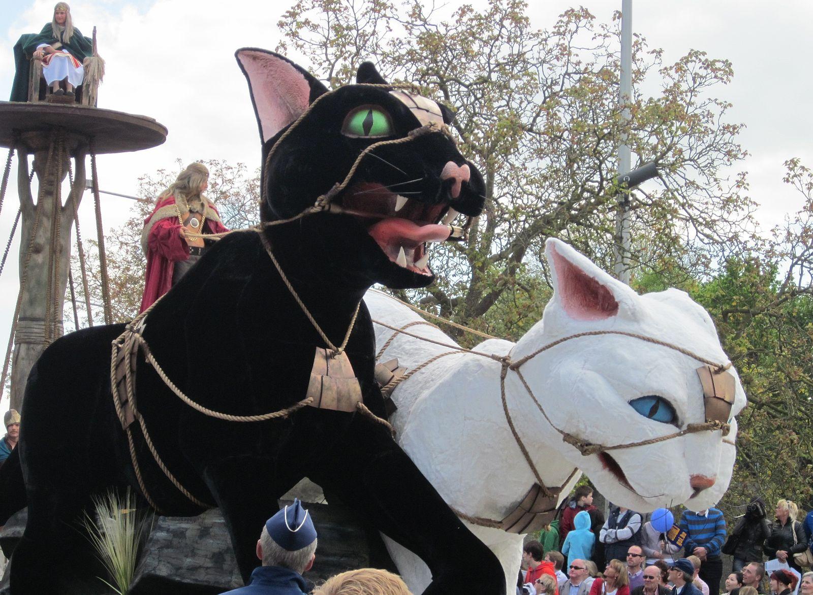 Kattenstoet_©Zeisterre gatti