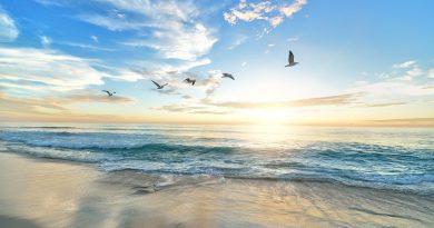 """Giornata Nazionale del Mare, UNESCO: """"In Italia servono più aree protette"""""""