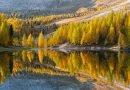 Dal Friuli alla Campania, ecco le foreste più belle d'Italia: PEFC premia i vincitori del concorso fotografico 2021