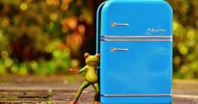 Selectra, 7 consigli per gestire frigo e freezer, risparmiando in bolletta e riducendo gli sprechi